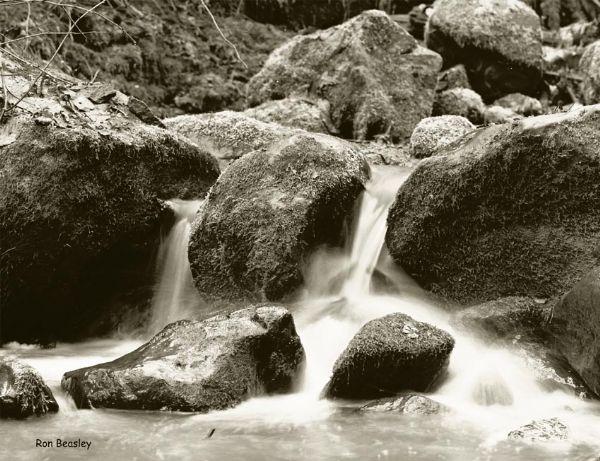 Balch Creek-01