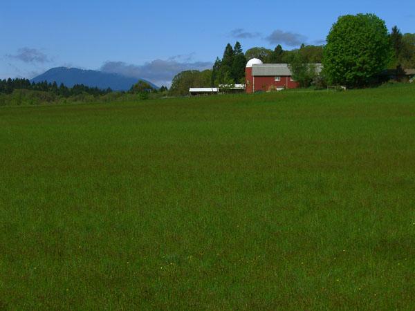 barn and peak
