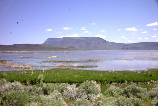 Crump Lake