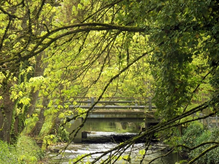 A Bridge Not Too Far