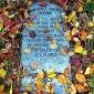 Fall & Death