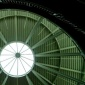 Lillis Oculus