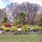 NW Garden