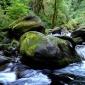 rock stream