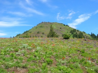 Cone Peak (OR)
