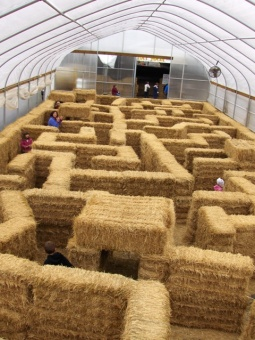 Hay Maze at Bowman Farms