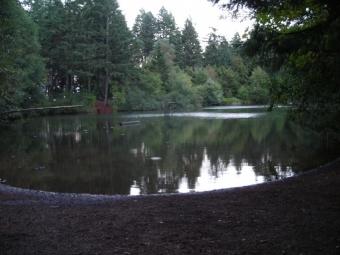 Cronemiller Lake