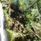 Drift Creek Falls